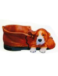 Beagle liegend auf Schuh
