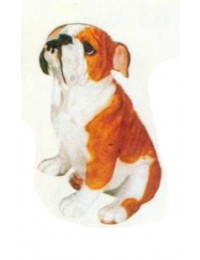 Bulldogge sitzend