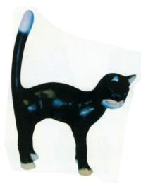 Katze macht Buckel schwarz weiß groß