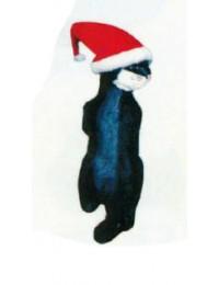 Katze hängend mit Zipfelmütze