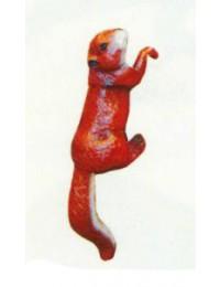 Eichhörnchen hängend Kopf rechts