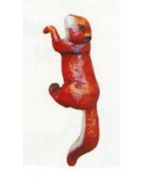 Eichhörnchen hängend Kopf links