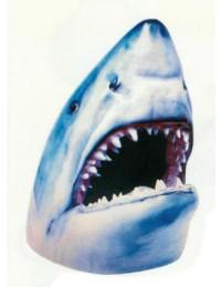 Haikopf mit offenem Maul