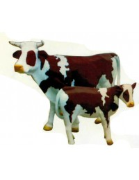 braun weiß gefleckte Kuh mit Hörnern