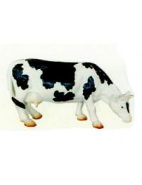 schwarz weiße Kuh grasend klein