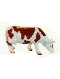 braun weiße Kuh grasend klein