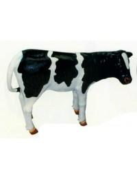 stehende Kuh schwarz weiß mittel