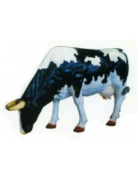 lebensgroße grasende Kuh schwarz weiß