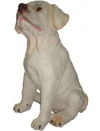 Hund, Labrador Welpe