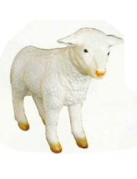 großes weißes Lamm