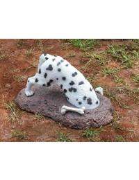 Schwarzweißer Hund buddelt nach Knochen