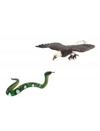 Weißköpfiger Adler fliegend und Schlange