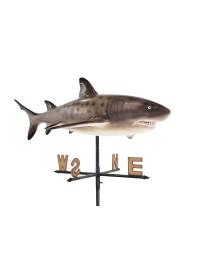 Sandtigerhai Windrichtungsanzeiger