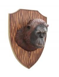 Orangutankopf auf Holz