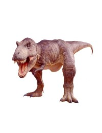 Dinosaurier Tyrannosaurus sehr groß