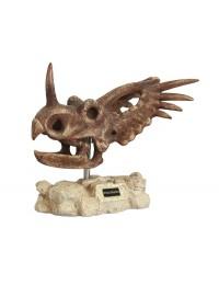 Dinosaurier Styracosaurus auf Stein