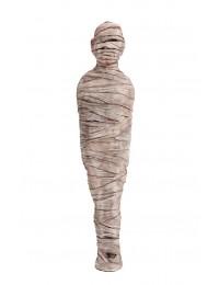 ägyptische Mumie Groß