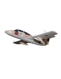 Flugzeug Aero L 29 Delfin MB