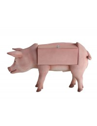 Schwein Spielzeugkiste