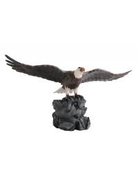 Weißköpfiger Adler auf Stein