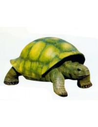 große Riesenschildkröte grün