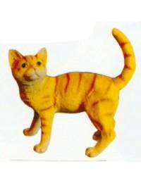 stehendes beige gestreiftes Kätzchen