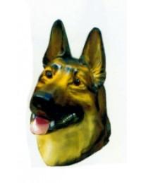 Kopf Deutscher Schäferhund