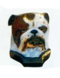 Bulldoggekopf