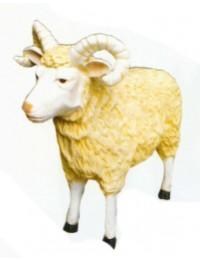 Schafsbock lebensgroß