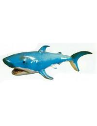 kleiner schwimmender Hai