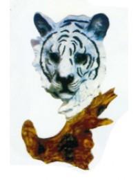 Tigerkopf weiß
