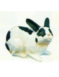 kleiner liegender weiß schwarzer Hase