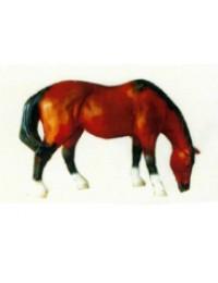 kleines Pferd braun schwarz grasend