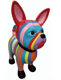 Hund Chihuahua bunt gestreift