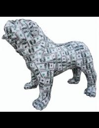 Hund Bulldogge Dollar