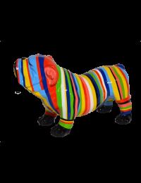 Gestreifte Bulldogge