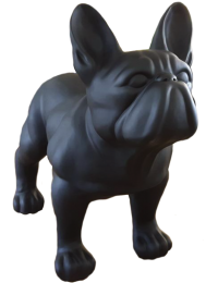 Schwarze Bulldogge Matt XL