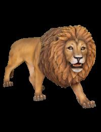 großer Löwe mit Mähne