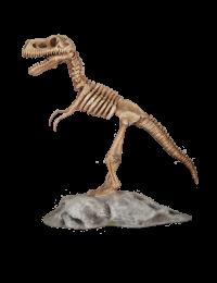 T-Rex Skelett auf Plattform