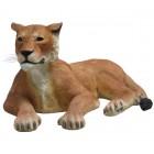 Löwin liegend