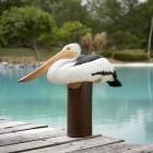 Pelikan auf Säule