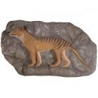 Tasmanischer Tiger auf Felsvorsprung