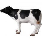 Mini Kuh