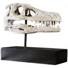Raptor Schädel auf Base
