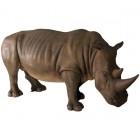 Rhinoceros Nashorn