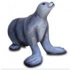 Seelöwe Seerobbe weiß