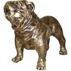 Golden Bulldog