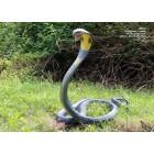 Königs Cobra Schlange 5m