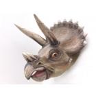 Saurier Triceratopskopf