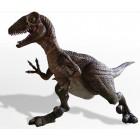 Utah-Raptor